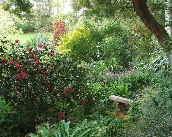 Paslaptingas suoliukas tarp augalų. Nuotrauka iš www.mooseyscountrygarden.com