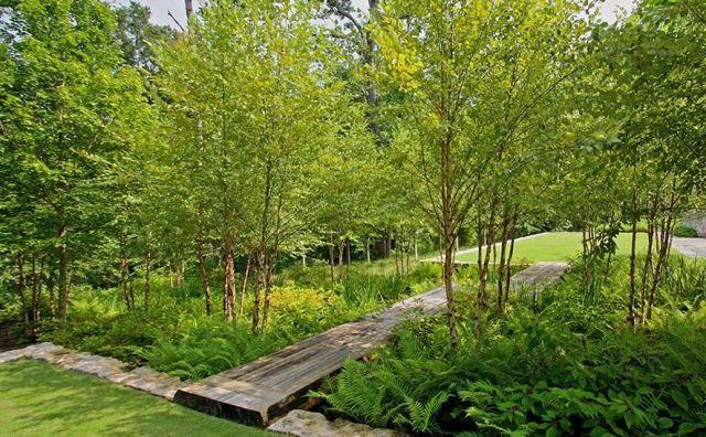 Lietaus sodas - į paparčių zoną suteka lietaus vanduo. Nuotr. http://www.asla.org